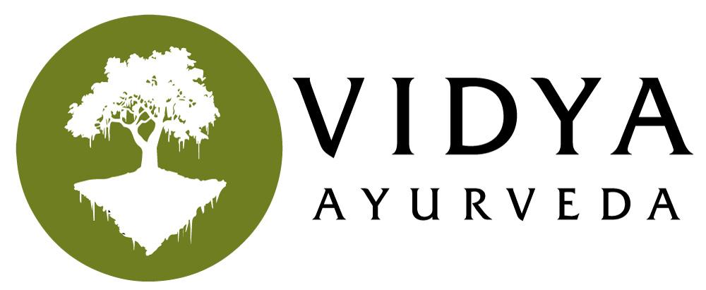 photo logo vidyal