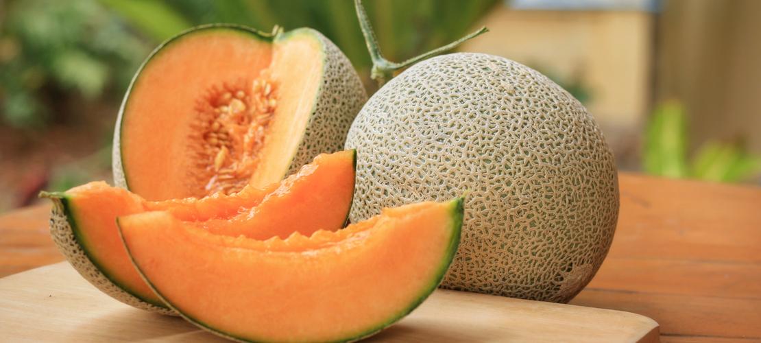bienfaits du melon