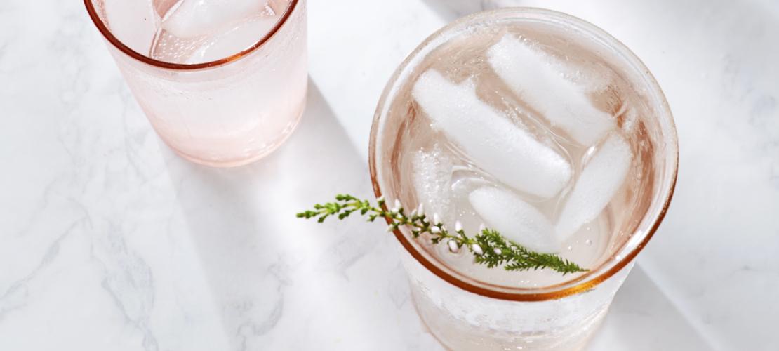 quel gin choisir