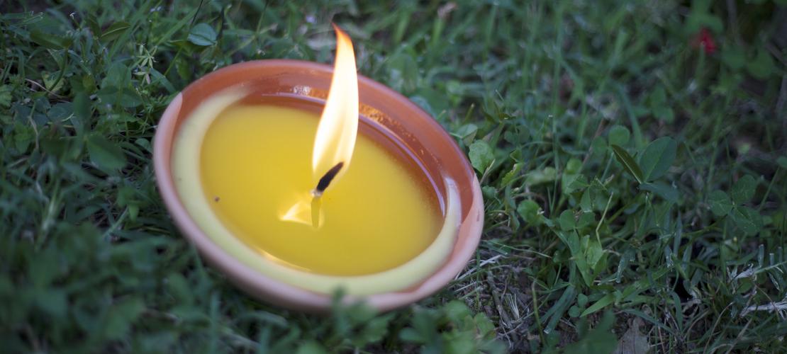 Muggenbeten : hoe je beschermen(voor een rustige nacht) ?