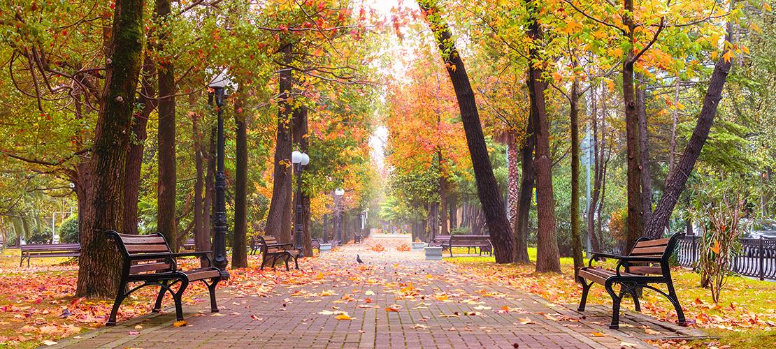 parken in Antwerpen